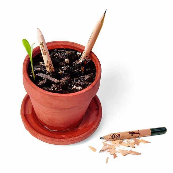 bleistift-write-grow.jpg